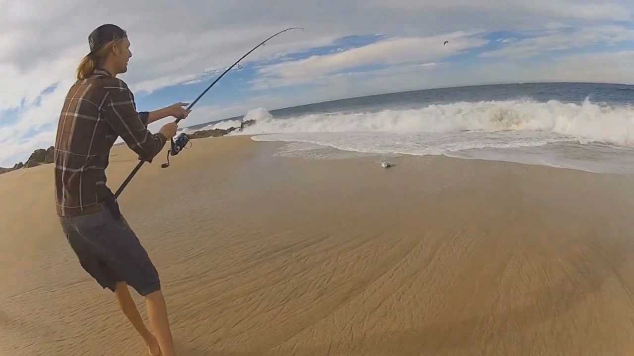Roosterfish surfcast cabo san lucas baja mexico youtube for Rooster fish cabo
