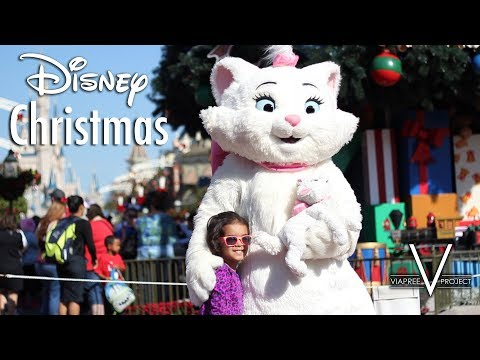 Walt Disney World Vacation 2014 - Music Video
