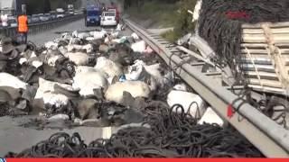Freni Boşalan Kamyon Otomobile Çarptı: 1 Ölü 2 Yaralı