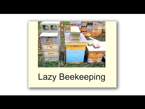 Michael Bush, Lazy Beekeeping