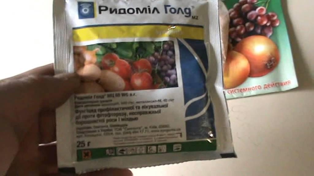 препараты от милдью винограда фото