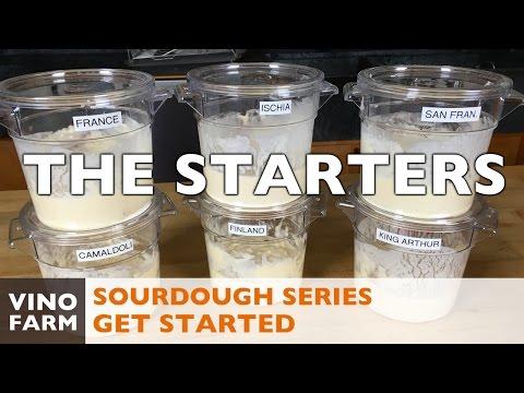 Sourdough - Starting the Starter - Beginner Bread Baking