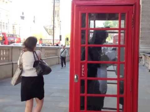 Best Man video - Biske the cat goes wild in London June 2013
