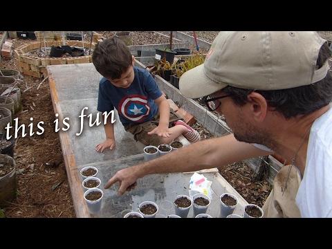Starting Seeds! (Part 2) Great Garden Helper!