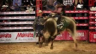Cia. F. Bulls | Touro Assédio Moral | Country Bulls 2017