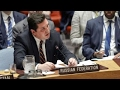 Russia vetoes UN condemnation of Syrian attack
