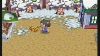 Animal Crossing City Folk How To Get Golden Roses With