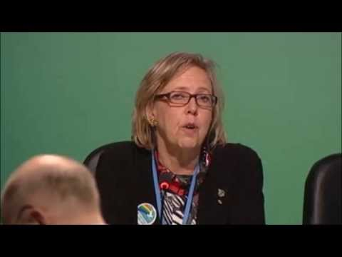 Elizabeth May: Global Greens Press Conference at COP19