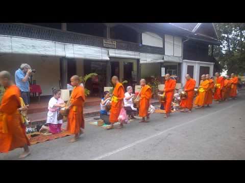 Yapping with Yomi: Monk Almsgiving Ceremony, Luang Prabang, Laos