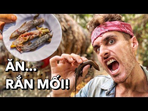 Slingshot Catch and Cook Lizards! Săn Bắt Bằng Ná và Nấu Rắn Mối!