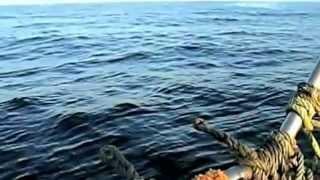 Rybacy nagrywają wojskowe odrzutowce ścigające UFO wlatujące w wodę - dobra jakość