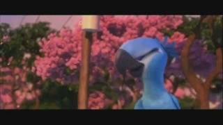 Take You To Rio (music Video)