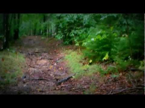 Five minute relaxing walk in the rain. HD 1080p