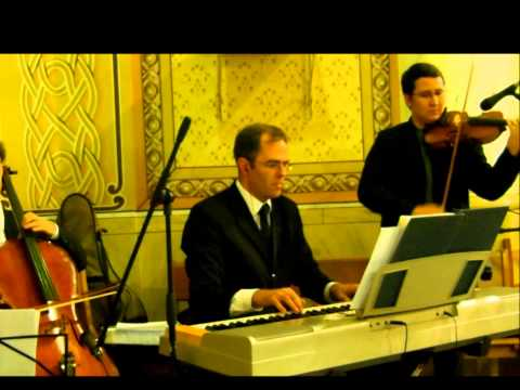 Canon in D -  violino, piano e cello - Vinicius Violinista