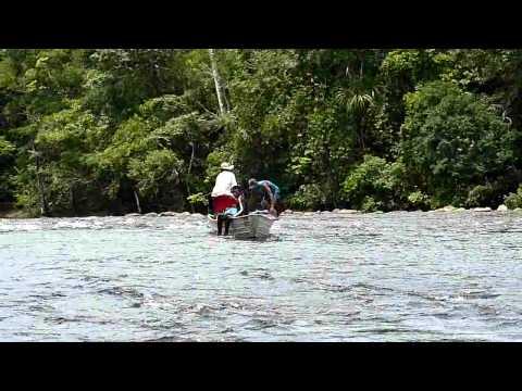 Deslocamento Rio Jatuarana AM 2011 #2