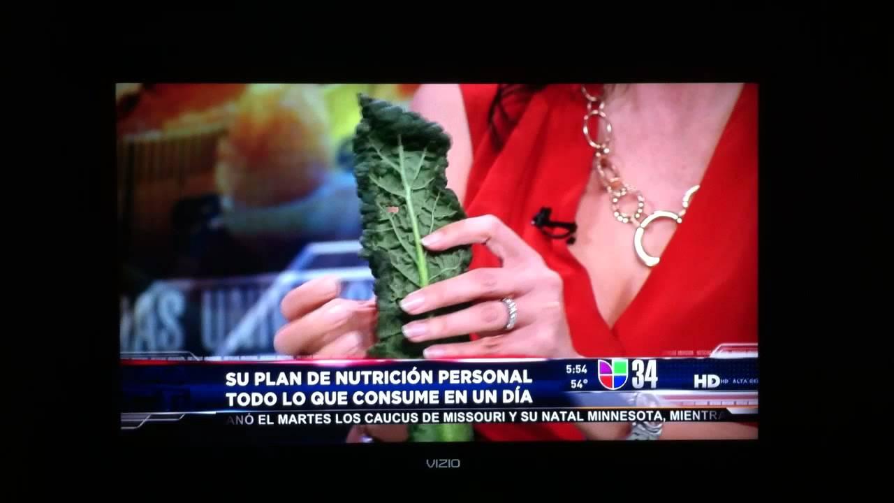 Luz maria briseno plan de nutricion new style for 2016 2017