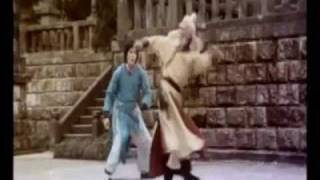 Top 10 Kung Fu Stars- Music Vid-