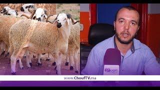 حصــري و بالفيديو..خلافا للمتداول..هذا هو أول أيــام عيد الأضــحى بالمغرب   |   بــووز