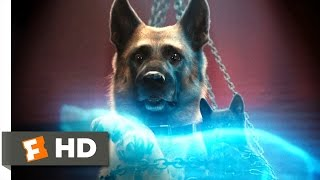 Cats & Dogs: The Revenge Of Kitty Galore #6 Movie CLIP