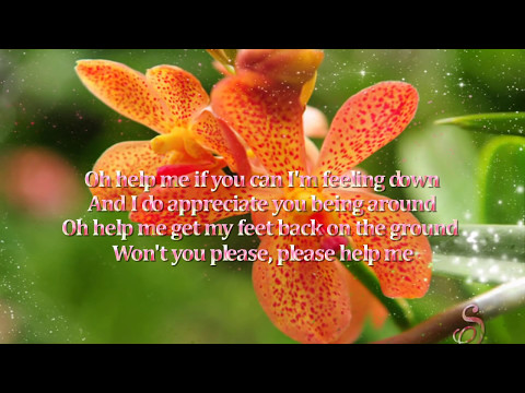 Help - Tina Turner (with lyrics)