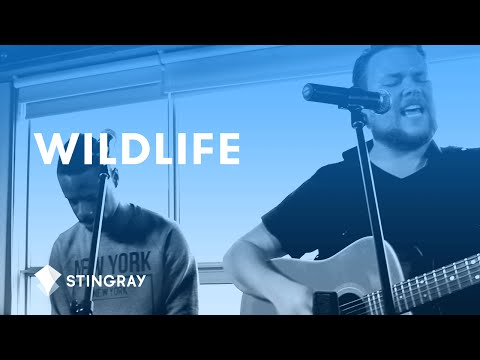 Galaxie Music: Wildlife Performance