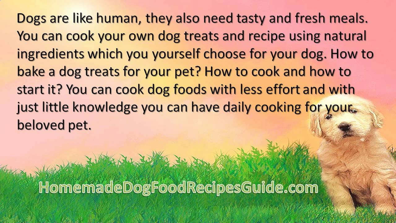 Dog Food Recipes Chicken Mince