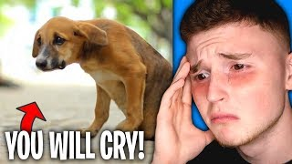 The SADDEST VIDEOS On The ENTIRE INTERNET! (You Will Cry)