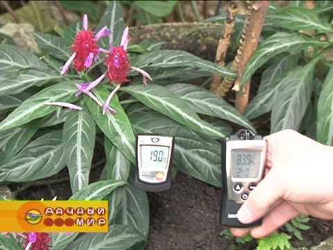 Измерительная техника для теплиц