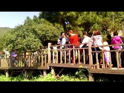vietnam travel-Viếng thăm mộ đại tướng Võ Nguyên Giáp và ghé thăm Hoành Môn Quan -du lich viet nam