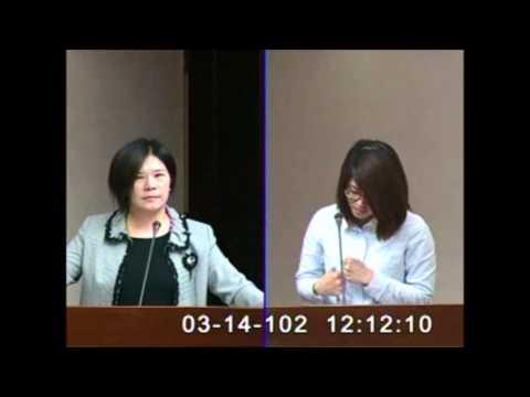 2013-3-14-吳宜臻-質詢政府缺乏保母退場機制的建立