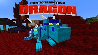 Minecraft HOW TO TRAIN YOUR DRAGON Dragon Treasure
