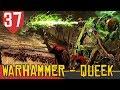 As vezes n o adianta insistir Total War Warhammer 2 Cl B lis 37 Gameplay PT BR