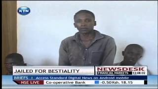 Man jailed for 10 years for defiling goat [VIDEO NEWS]