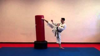 Spinning Wheel Kick Warren Levi Karate