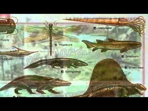 La Era Paleozoica