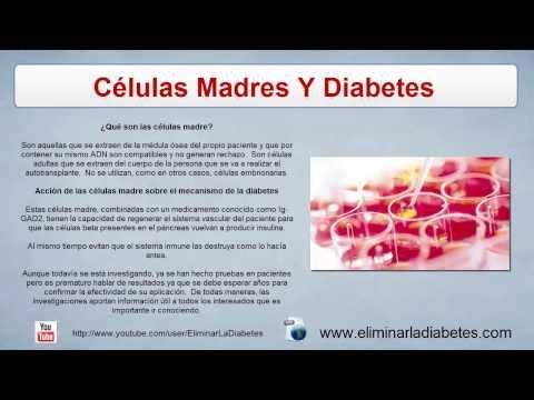 Cura Para La Diabetes Con Celulas Madres - Adios diabetes