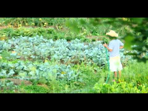 The Basics of Natural Farming (part 2 of 2)