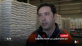 الدواجن التي يتم إنتاجها بالمغرب ليست مصابة بالأنفلونزا
