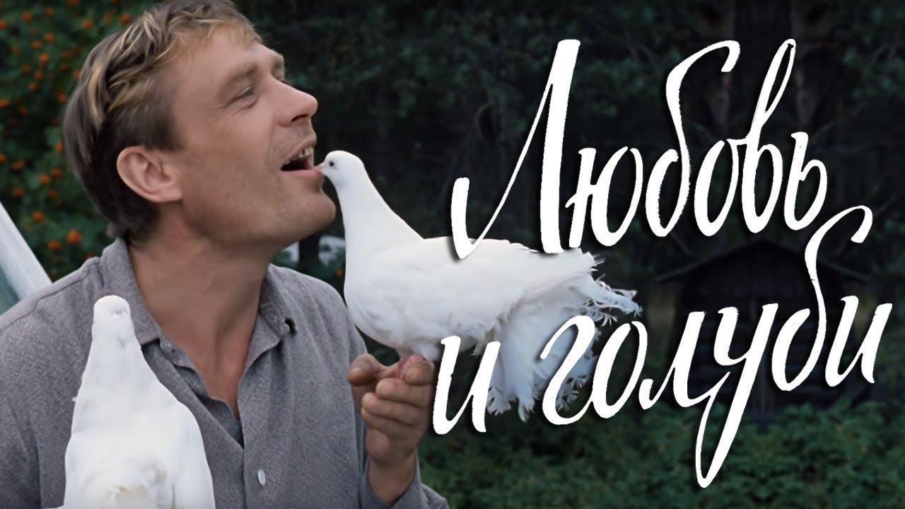 И голуби смотреть онлайн hd любовь и