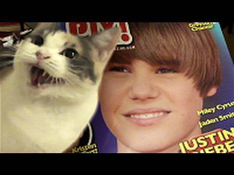 Thumbnail image for 'Cat Scratch Bieber'