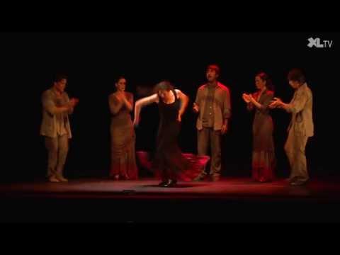 Arte Flamenco 2013: Florilège du 25ième anniversaire