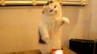 Theremin Kitty