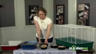 Rabbit Care Proper Housing For Your Rabbit