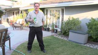 Home & Lawn Pest Control : How To Get Rid Of Moles In Your
