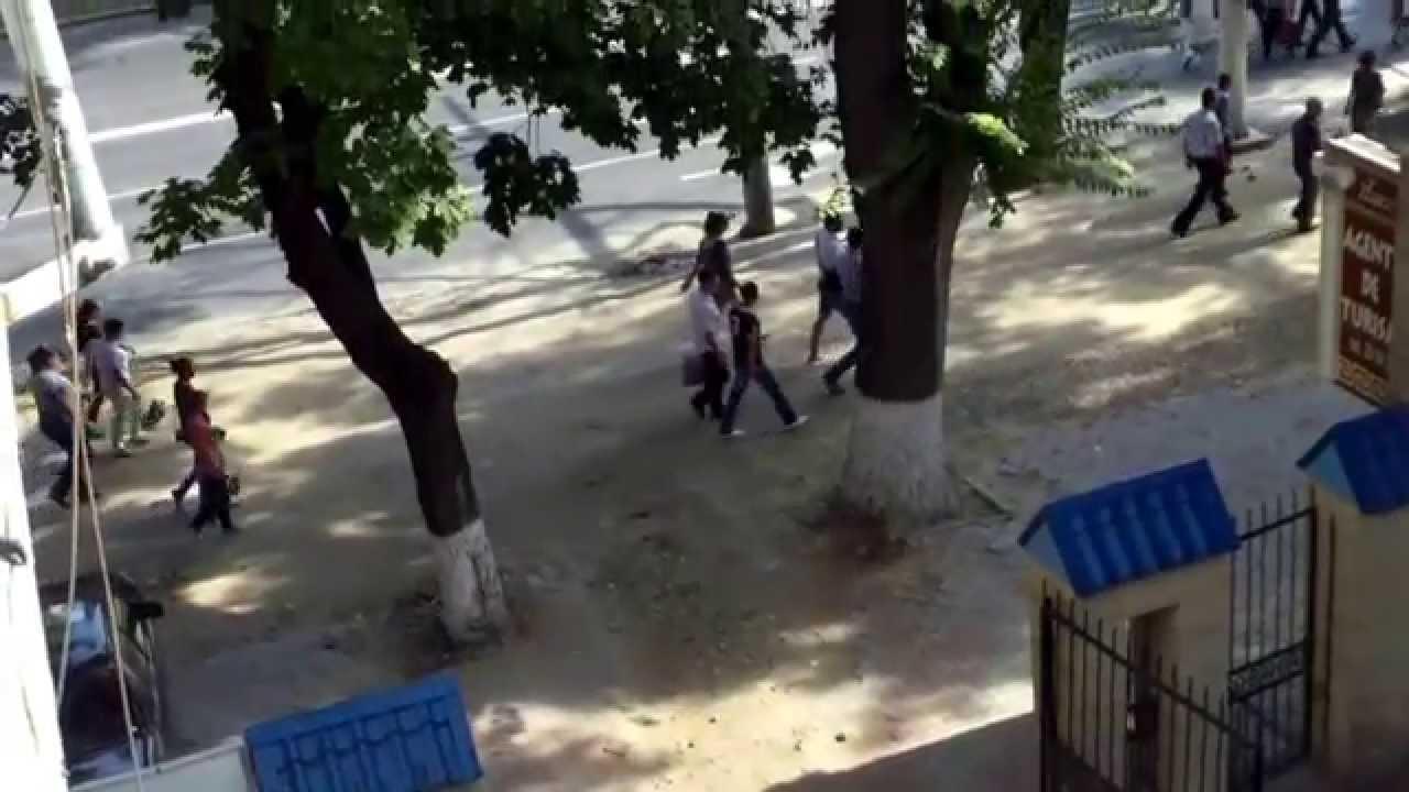 Simpatizanții #pldm căutau wc prin curțile din capitală