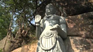 Sacred Buddha Cannabis Medicine -- Pt 3.