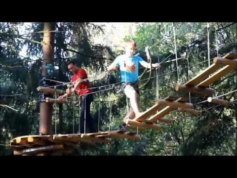 High Wire Forest Park AvaTarZ