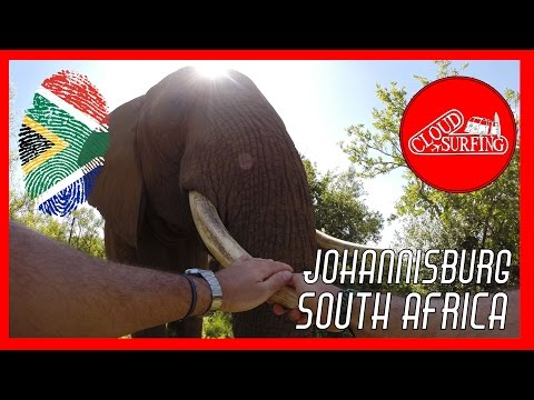 Johannesburg - Three of a kind, the most awesome elephant family in Africa