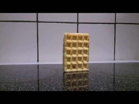 Waffle Falling Over