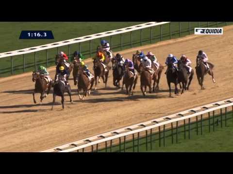 Vidéo de la course PMU PRIX D'ALDERNEY